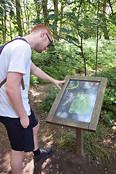 Young man in Epping Forest looking at information map, East London UK 2020. MR