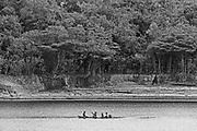 Manaus<br /> Toucano<br /> naturetours.com