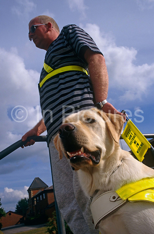 Wearing darkened glasses, unsighted Tim Gutteridge stands outside The Guide Dogs for the Blind Association's offices in Reading, England with Lewis, a one year-old Labrador Retriever who has been groomed to become a guide dog. Tim is hoping to forge a strong relationship with his new-found companion whose job is to confidently leads the way anticipating and avoiding obstacles and dangers. Animals like Lewis don't start learning with a guide dog trainer until they are 12-15 months old. There are around 5,000 working guide dogs in the UK today, though the Guide Dogs charity care for around 8,000 dogs, including breeding stock, puppies, dogs in training and retired dogs. A sign in bright yellow says 'Please don't distract me I'm working.'