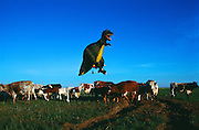 A 129-foot-tall (39 m) T.rex hot-air balloon, owned by Thunder and Colt Balloons, glides over Dinosaur Provincial Park and a farmer's field of Cows.