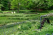 Chanticleer Gardens, Wayne, PA