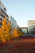 Harmony Office Center and Milonga apartment building located in Eko Park Estate in Warsaw.