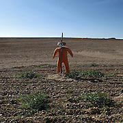 Scarecrow near Benavente, Zamora province . Spain . The WAY OF SAINT JAMES or CAMINO DE SANTIAGO following the Silver Way, between Seville and Astorga, SPAIN.Tradition says that the body and head of St. James, after his execution circa. 44 AD, was taken by boat from Jerusalem to Santiago de Compostela. The Cathedral built to keep the remains has long been regarded as important as Rome and Jerusalem in terms of Christian religious significance, a site worthy to be a pilgrimage destination for over a thousand years. In addition to people undertaking a religious pilgrimage, there are many travellers and hikers who nowadays walk the route for non-religious reasons: travel, sport, or simply the challenge of weeks of walking in a foreign land. In Spain there are many different paths to reach Santiago. The three main ones are the French, the Silver and the Coastal or Northern Way. The pilgrimage was named one of UNESCO's World Heritage Sites in 1993. When there is a Holy Compostellan Year (whenever July 25 falls on a Sunday; the next will be 2010) the Galician government's Xacobeo tourism campaign is unleashed once more. Last Compostellan year was 2004 and the number of pilgrims increased to almost 200.000 people.