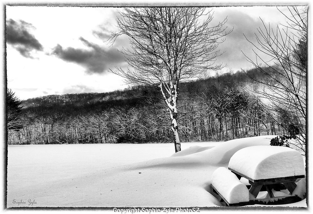Matthies Park Snow