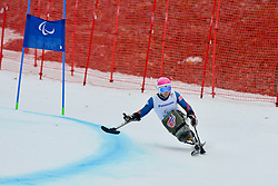 Anna Turney, Women's Giant Slalom at the 2014 Sochi Winter Paralympic Games, Russia