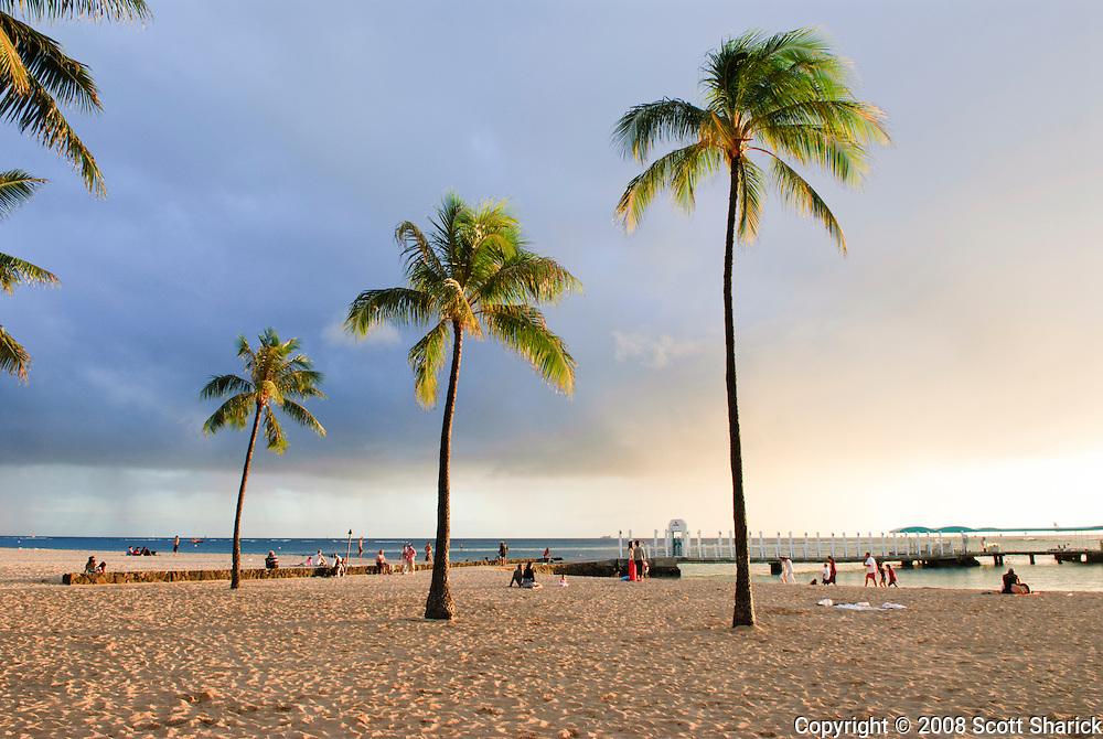 Three palm tree on Waikiki beach.
