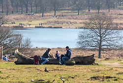 """© Licensed to London News Pictures. 27/02/2021. London, UK. Families enjoy the sunshine in Richmond Park, South West London this afternoon as weather forecasters predict a mild and sunny weekend. This week, Prime Minister Boris Jonson announced his """"Roadmap Map' out of Lockdown with a gradual unlocking of Covid-19 restrictions over the next few months. Photo credit: Alex Lentati/LNP"""