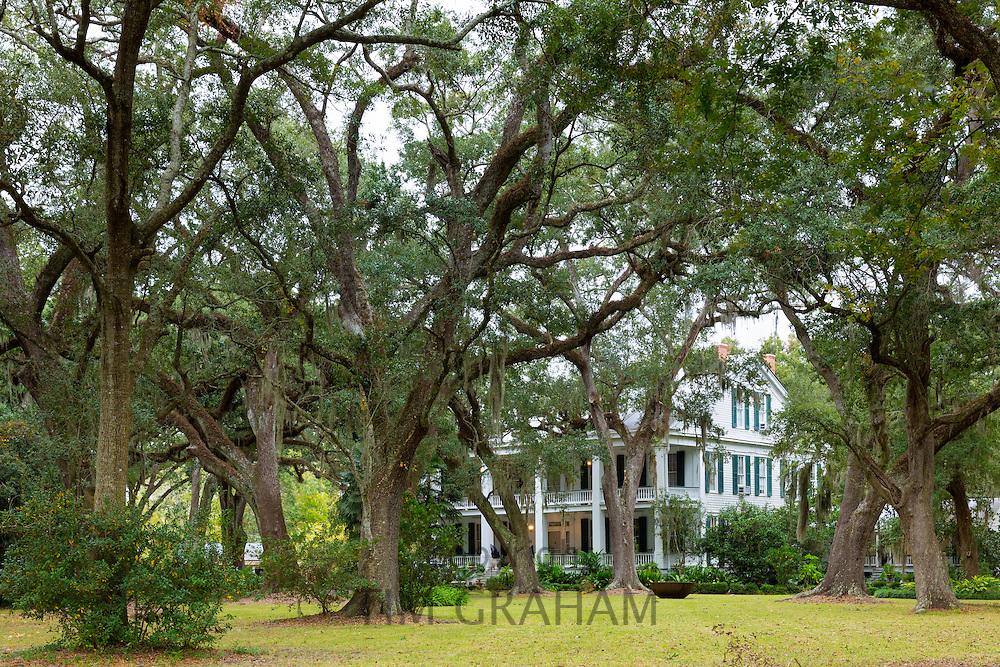 Albania Plantation mansion house with Southern Live Oak trees Quercus virginiana, on Bayou Teche by Jeanerette, Louisiana, USA