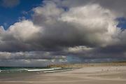 Beach<br /> Volunteer Point, Johnson's Harbour, East Falkland Island. FALKLAND ISLANDS.