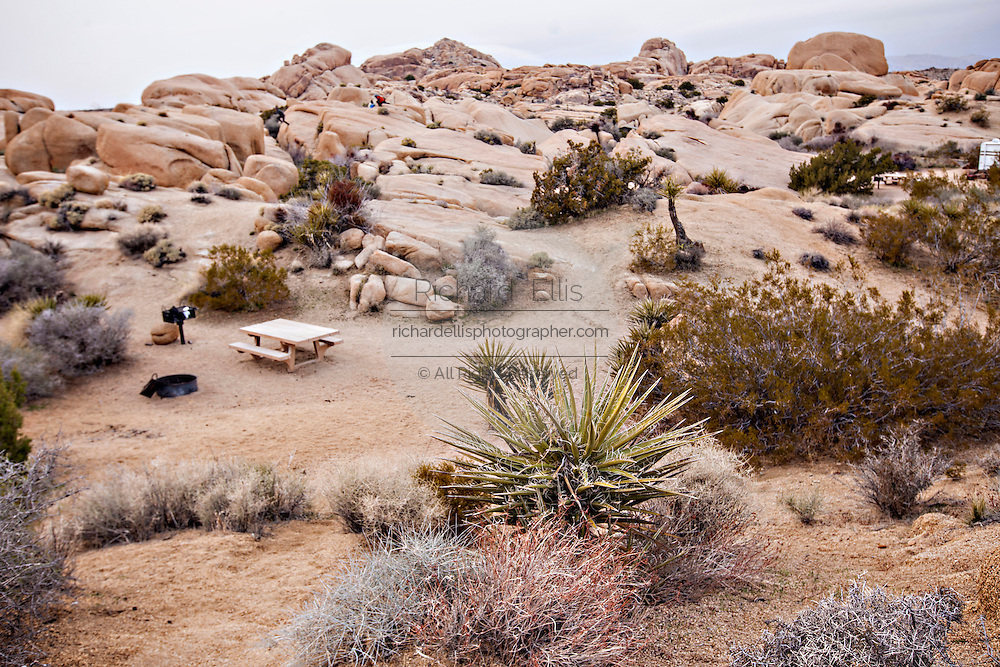 Jumbo Rocks camp ground in Joshua Tree National Park, California.