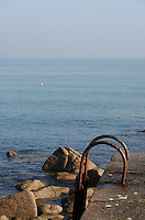 Stepladder to the sea at Bulloch Harbour in Dalkey Dublin Ireland