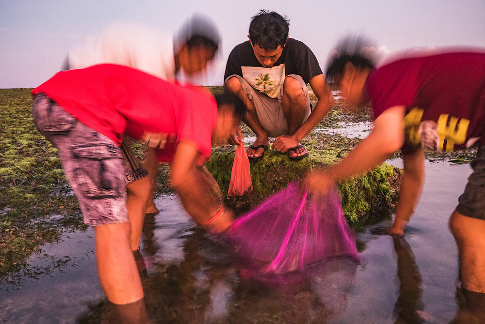 Young men use a potato sack as a make-shift net to catch any small fish or crustaceans living among the rocks and seagrass beds off Bali, Indonesia.
