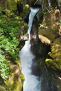 Ladder Creek Falls, a historic garden, and a 1/4 mile nature trail are adjacent to the Gorge Powerhouse in Newhalem, on Highway 20, Washington.