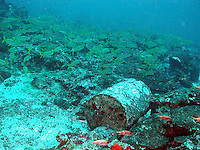 A trash barrel found along the ocean floor.