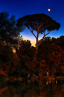 """""""Sunset moon shining over pine tree at Villa Borghese – Rome Autumn""""… <br /> <br /> I stumbled into photography just before graduation at the U of TN while volunteering at a local hospital where I was influenced to attend Brooks Institute.  The instructors preached the technical aspects of photography, and upon graduation…we could implement our own artistic vision.  As a commercial photographer since graduation, I have had little time to express my artistic vision…until I went to Italy for the first time, where I discovered my true love and passion!  I consider myself a """"contemplative"""" photographer, and as such, I have a three-part process to achieve my final presentation for each image: the discovery, how I perceive the image creation, and how I hope others will perceive the image.  This artistic pursuit, I imagine, is similar to Michelangelo viewing a piece of marble for the first time.  Villa Borghese in Roma is a famous Gardens and Museum begun in the early 17th century, highlighted by a """"Temple of Aesculapius"""" at the garden lake.  Surrounding this small lake is a three-foot iron fence, which I now affectionately call """"Il lago di dolore"""", or Lake Pain!  I tried to cross this iron fence with camera in hand and a 20lb bag on my shoulder…needless to say, it did not go well!  Despite the intense pain, I continued to take 60 images around the lake, and upon return home, I stubbornly refused to look at them until recently.  My disdain for Lake Pain kept me from discovering the true artistic vision I first saw when I began creating these images. I finally gave into the contempt I had for the Lake and began working on several images.  Perhaps, the viewer will perceive the great pain it took to finally engender a feeling of solace and peace in the true vision, and find that suffering eventually brought forth eminent beauty.  As for this photographer, Il lago di dolore will be a constant reminder that the creation of great art sometimes endures great pain!"""