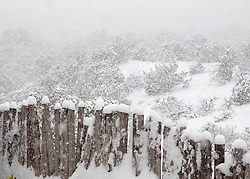 detail of a coyote fence in a snow storm overlooking Santa Fe, NM