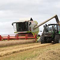 Barley Harvest Perthshire