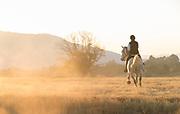 View of woman riding horse at sunset in savannah in Mlilwane Wildlife Sanctuary, Eswatini