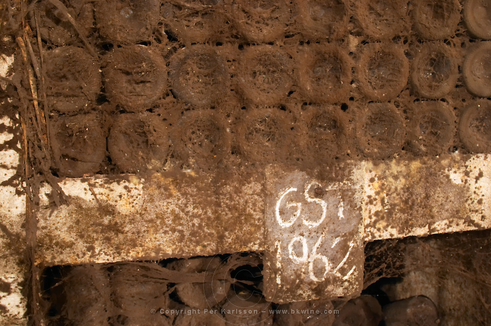 Old mouldy dusty cobweb bottles marked 1962. Bottles aging in the cellar. Torres Penedes Catalonia Spain
