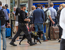 © Licensed to London News Pictures. 27/05/2017. London, UK. A police officer with a sniffer dog patrols Padding Station in London. Security has been increased at venues across the UK, with the military called in to help police, following a terrorist attack at a music concert in Manchester on Monday evening. Photo credit: Ben Cawthra/LNP