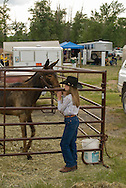 Young cowgirl giving affection to yearling mule (Mulus mula) at Montana Mule Days in Drummond Montana