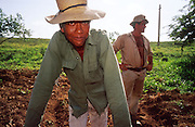 23 JULY 2002 - TRINIDAD, SANCTI SPIRITUS, CUBA: Workers on a state collective farm near the colonial city of Trinidad, province of Sancti Spiritus, Cuba, take a break while planting corn July 23, 2002. Trinidad is one of the oldest cities in Cuba and was founded in 1514. .PHOTO BY JACK KURTZ