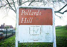 Pollards Hill 2nd February 2021