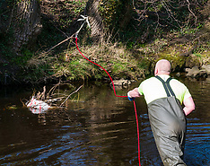 Water of Leith Spring clean, Edinburgh, 31 March 2019
