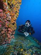 Duane shipwreck, Key Largo, FL