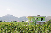 View over the vineyard with mountains in the background and an Albanian house. Cobo winery, Poshnje, Berat. Albania, Balkan, Europe.