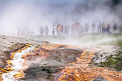 Crowds at Hot springs, Yellowstone National Park, steam, thermal features, tourists,