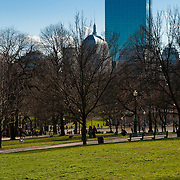 Hancock Tower as seen from Boston Common Park in spring