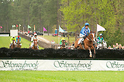 9  April, 2011:  Paddy Young and SLANEY ROCK lead the field from wire to wire in the Stoneybrook Cup.