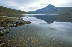 Man fishing by lake.<br /> Beiarn/ Norway.<br /> Released.