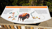 Interpretive display, Cave and Basin National Historic Site, Banff National Park, Alberta, Canada