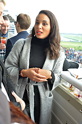 NEWBURY, ENGLAND 26TH NOVEMBER 2016: Louise Hazel at Hennessy Gold Cup meeting Newbury racecourse Newbury England. 26th November 2016. Photo by Dominic O'Neill