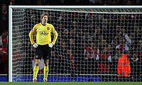 Photo: Paul Thomas.<br /> Arsenal v Manchester United. The Barclays Premiership. 21/01/2007.<br /> <br /> Dejected Man Utd keeper Edwin van der Sar.