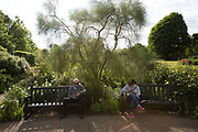 Sitting on park benches in Hyde Park wild gardens, A man and women use their mobile phones on 24th May 2017 in London, United Kingdom. From the series Our Small World, an observation of our mobile phone obsessions