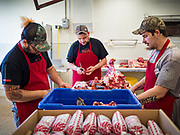 30 APRIL 2020 - STANHOPE, IOWA: JESSE CHERRY IV, left, BRANDON STRUNK, and JORDAN TEEL trim beef at Stanhope Locker and Market, in Stanhope, Iowa. The family owned meat locker slaughters and butchers beef cattle, pigs, and sheep. The COVID-19 (SARS-CoV-2/Coronavirus) pandemic has spread among employees in the meat packing plants in the Iowa, Nebraska, South Dakota, and Minnesota, forcing many to close or curtail operations. This has resulted in farmers euthanizing thousands of pigs and beef cattle. Pork production has been slashed by about 40% because of the pandemic. Meat lockers and family owned butchering facilities have been swamped with farmers and ranchers trying to sell their livestock to them rather than the meat packing plants, but the meat lockers are backed up by the huge increase in supply. Many meat lockers are now full through the end of the year. Stanhope Locker and Market doesn't have any openings for slaughtering and butchering either cattle or pigs until mid-December 2020.          PHOTO BY JACK KURTZ