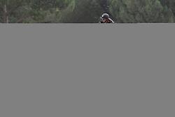 Broucqsault Margaux (FRA) - Oscar du Bassin<br /> FEI European Jumping Championship for juniors <br /> Arezzo 2014<br /> © Hippo Foto - Stefano Secchi