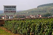 vineyard corgoloin the end of cote de nuits clos des langres ardhuy nuits-st-georges cote de nuits burgundy france