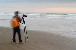 Photographer and Pacific Ocean waves breaking at Chapman Beach in pastel sunset, near town of Cannon Beach, Oregon, USA.