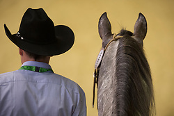 Giuseppe Prevosti, (ITA), Boemil Twin Robotop - Horse Inspection Reining  - Alltech FEI World Equestrian Games™ 2014 - Normandy, France.<br /> © Hippo Foto Team - Dirk Caremans<br /> 25/06/14