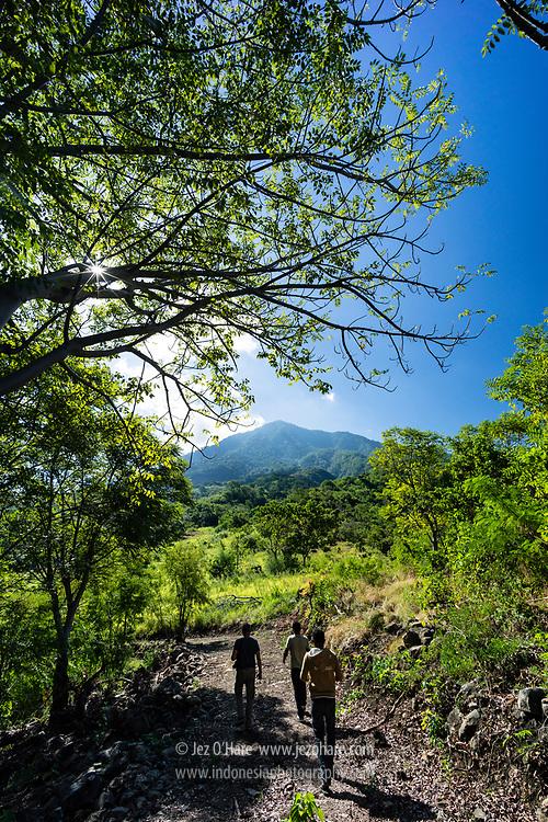 Gunung Ile Mandiri, Larantuka, Flores Timur, Nusa Tenggara Timur, Indonesia