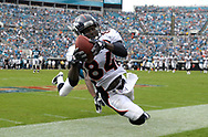 Denver Broncos wide receiver Brandon Lloyd (84) catches a ball out of bounds during the second half of an NFL football game against the Jacksonville Jaguars in Jacksonville, Fla., Sunday, Sept. 12, 2010.(AP Photo/Phelan M. Ebenhack)