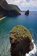 Huelo Island, home of rare Loulu Palms, North Shore, Molokai, Hawaii