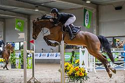 Heylen Rik, BEL, Heavenly van de Noordheuvel<br /> Klasse Zwaar<br /> Nationaal Indoor Kampioenschap Pony's LRV <br /> Oud Heverlee 2019<br /> © Hippo Foto - Dirk Caremans<br /> 09/03/2019