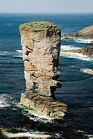 Yesnaby Castle a sea stack on the Coast of Mainland Orkney islands Scotland