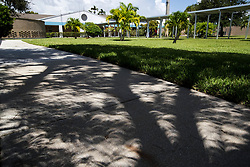 August 21, 2017 - Boynton Beach, Florida, U.S. - Crescent shaped shadows are formed by the partial eclipse of the sun as light shines through at tree on Christa McAuliffe Middle School campus in Boynton Beach, Florida on August 21, 2017. (Credit Image: © Allen Eyestone/The Palm Beach Post via ZUMA Wire)
