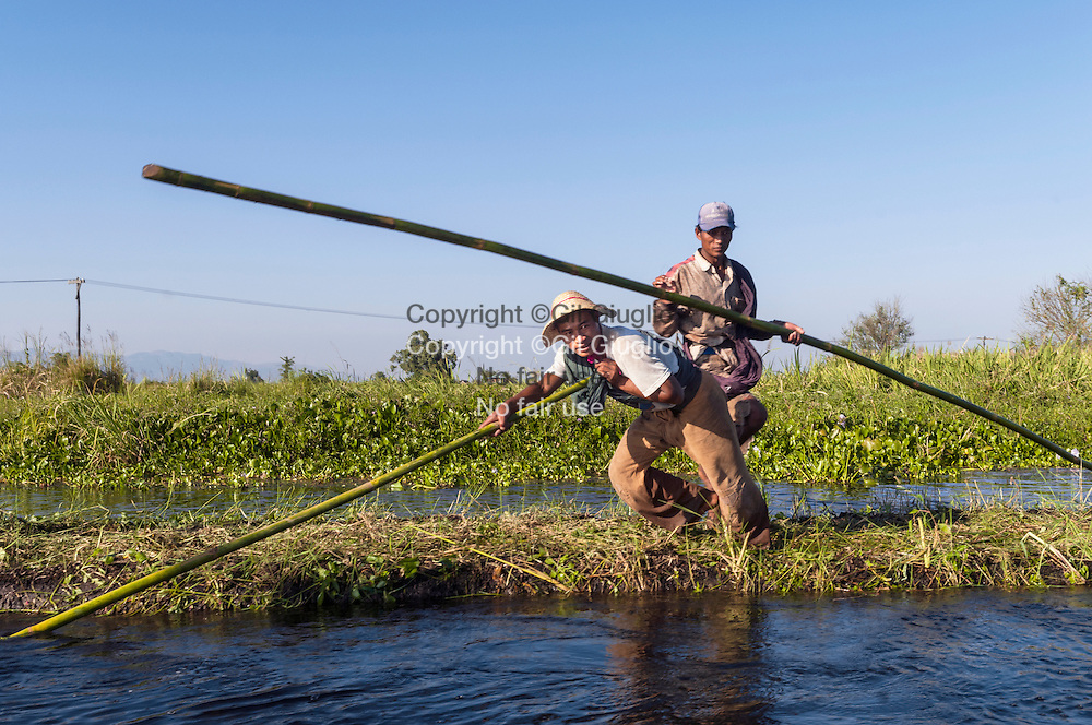 Myanmar, état shan, lac Inlé,  jardins potagers flottants de l'etnie inthas, village of Thale// Myanmar, Shan state, Inle lake, floating vegetable gardens of Inthas ethnic group, village of Thale